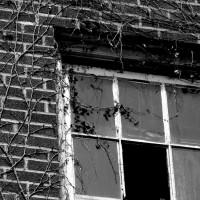 bigstock-Old-Window-1676424
